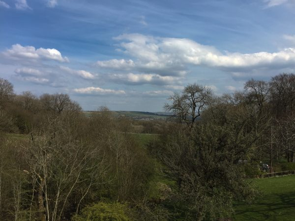 woodnook_woodlands_view